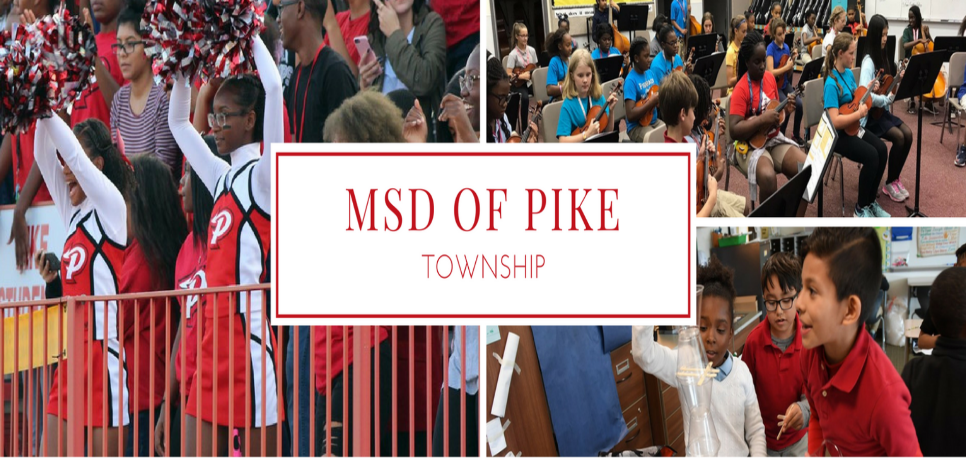 msd of pike pic